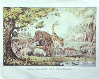 Vintage Animal Print, Biblical Print, Nathaniel Currier, Creatures, Nursery Print, Reproduction