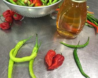 Hot Pepper Honey. Raw, Pure