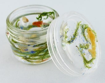 Can, box, jewelry box, resin
