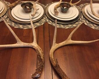 Pair Real Deer Antlers, Natural