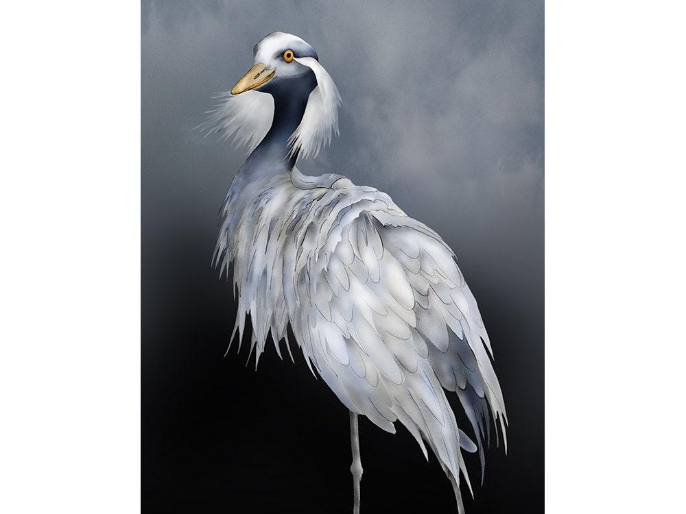 Demoiselle Crane 9x12 Signed Fine Art Print Graceful Bird