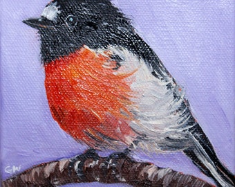 ROBIN OIL PAINTING, daily painting, bird painting, miniature painting, robin, bird, black capped robin, cute bird, miniature painting,purple