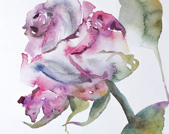 rose . original watercolor painting