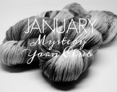 January Mystery Yarn Club - 1 Month - Doe Base - SW MCN Fingering Weight - Will Ship in 3 weeks