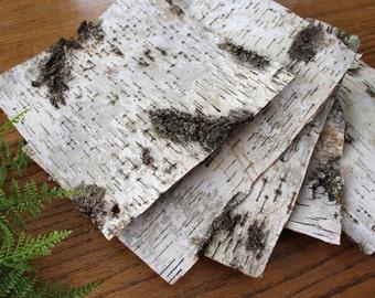 5 XL Birch Bark Sheets / All Natural Birch Bark Paper / Birch Bark Crafts / Paper Birch Sheets / Birch Bark Squares