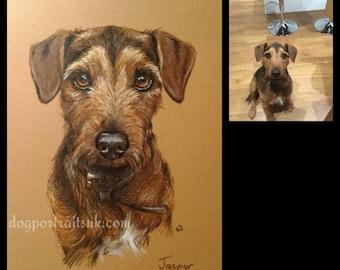Custom pet portrait, custom dog portrait, portrait from photo, pet memorial, pet memorial gift, dog mom, gift for her, gift for him