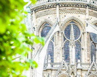 Paris Photograph, Notre Dame in Spring, Notre Dame Cathedral, Paris Wall Art, April in Paris, French Decor