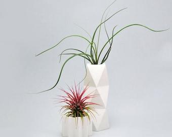Vase with concrete, cement, cement vase, vase polygon, polygonal vase vase.
