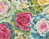 1/2 Yard Brassica Pastel Philip Jacobs fabric PJ051