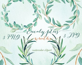 Eucalyptus  wreaths watercolor clipart hand drawn. Romantic wedding, mint green, tender green branches, wedding invitation.