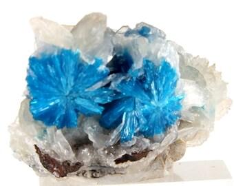 Cavansite Crystals On Stilbite Wagholi, Pune, Maharashtra, India (EA7409) crystal mineral reiki healing  gem stone vintage collect