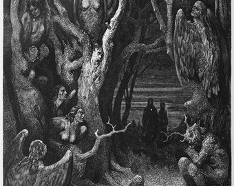 Gustave Dore: The Brute Harpies. (Illustration from Dante's Inferno) Fine Art Print/Poster. (003970)