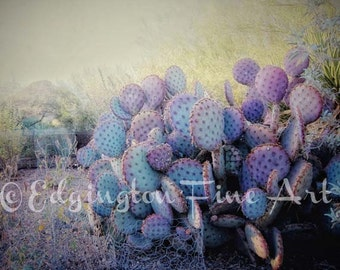 Cactus photo, Nature photography, landscape photo, desert, purple, green, nature decor, botanical art, Arizona photography, cactus print