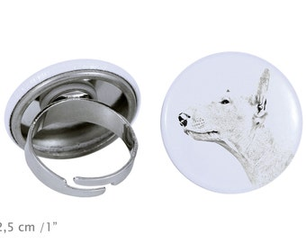 Ring with a dog - Bull Terrier