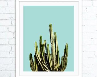 Cactus Wall Art Print, Desert Cactus Photo, Cactus Photography, Cactus Print, South Western Decor, Cactus Art, Cactus Print, Cactus ART