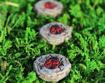 Ladybug Stepping Stones