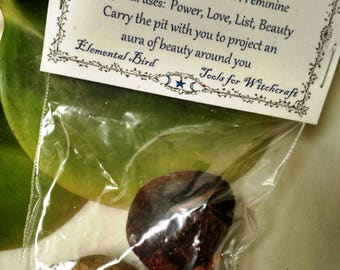 Avocado Seeds for magick , Wicca, Greenwitch, Witchcraft, Hedge Witch, for magickal intent Herbs for Magic