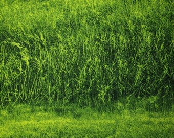 RJR - GRASS (Green) 100% Cotton Premium Fabric - sold by 1/2 yard landscape art