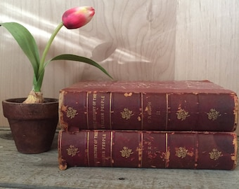 "Charming set of two antique books ""A Short History of the English People Vol. I and II"" by John Richard Green - Antique Red English Books"