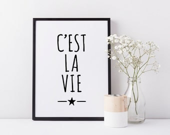 French expressions print, 'C'est la vie', Original wall art, Fun popular quotes, Fast shipping to USA