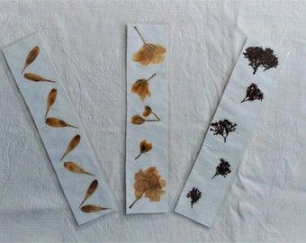 Pressed Flower Bookmarks- real pressed flowers, flower petals, bookmark, gift