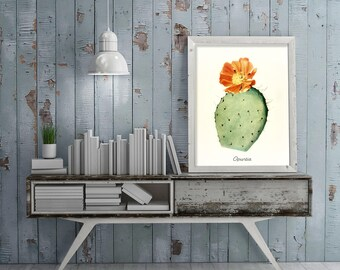 Vintage Cactus Reproduction Poster Art Print, Botanical Art, Succulents Print, Opuntia Illustration