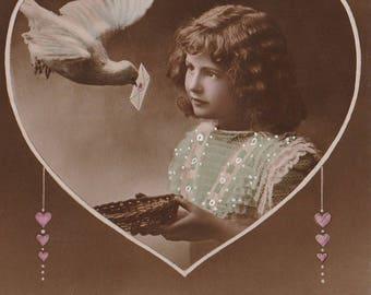 To My Love Antique Edwardian Valentine 1910's Era // Dove Real Photograph Postcard