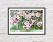 Pink Blossoms Print, Crabapple Tree, Nursery Wall Art, Girls Room Art, Pink Art, Floral Printable, Flower Photography, Digital Download