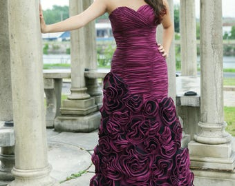 Prom/ Evening/ Quinceañera / Special Occasion Dress