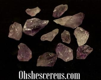 Cereus: Amethyst Crystal
