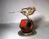 Bird on Nut #1431