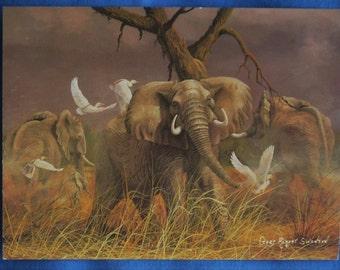 Gary Robert Swanson The Warning African Elephants Egrets Artist Signed Postcard