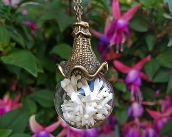 Glass Sphere Bone Orb Necklace - real mouse bones in brass and glass ball necklace, witch jewelry