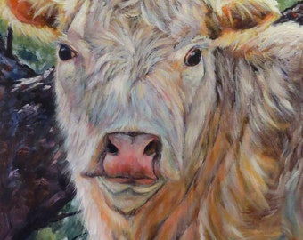 Cow cattle bull Giclee CANVAS PRINT of original oil painting Looking for Love by Sandra Cutrer Fine Art