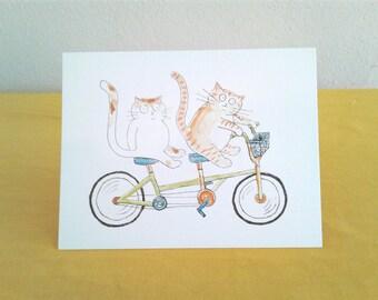 Cats on a Tandem Bike