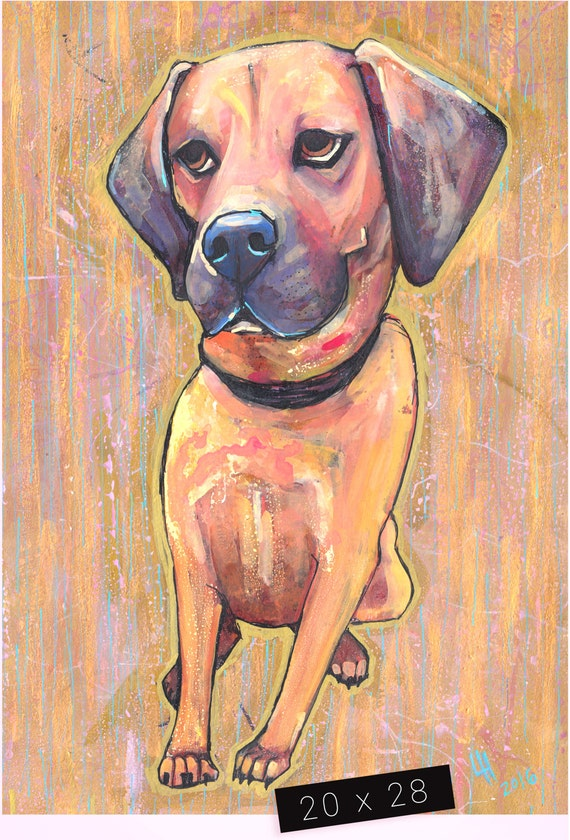 Pet Portrait / 20 x 28