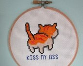 Completed Dirty Cat Cross Stitch