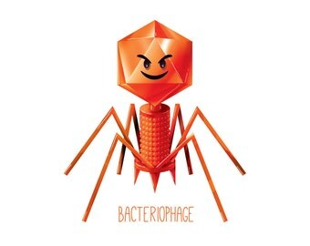 Bacteriophage Evil / Virus / Wall art print / biology / cute / fun / science / poster  / geek / nerd / nursery / kids science