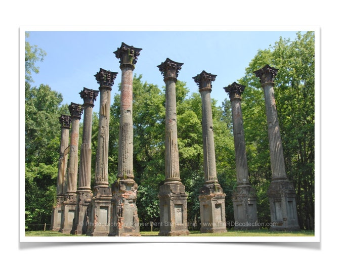 Windsor Ruins Photo - Historic Mississippi Home - Antebellum Mansion Columns- theRDBcollection - Renee Dent Blankenship