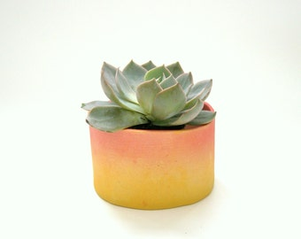 Succulent Planter in Sunset Fade Red and Yellow, Ceramic Pottery Ready to Ship