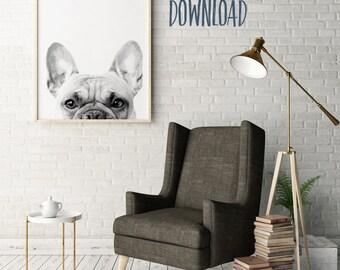 French Bulldog Print | Home Decor Wall Art | Printable | 8x10 | 11x14 | 16x20 | 18x24 | 20x24 | 24x36 {DOWNLOAD}