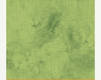 1/2 yard Ava by Whister Studios for Windham Fabrics green shade