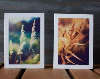Folded Card, Blank Card, Set of 2 Cards, 3x5 Card, Photo Card, Photography, Art
