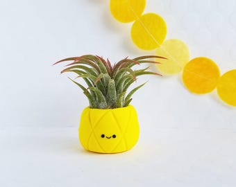 Pineapple Air Plant Holder, Tropical Pineapple Decor, Best of Summer, Gift for Her, Hostess Gift, Planter, Indoor Gardener, Air Planter