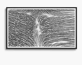 Morphocyte - Branching Formations _02, Cellular Division, Generative Digital Algorithmic Design Printable Download, Computational Art