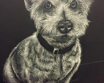 Custom Scratchboard Pet Portrait