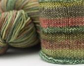 Self Striping Sock Yarn, Capicorn Colorway