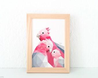 Galah cockatoo print, Pink and grey print, Lovebirds, Animal family, New baby nursery art, Baby room art, Australian bird, Galah parrot art