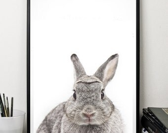 Rabbit print animals print wall art decor nursery print digital download poster 8 x 10
