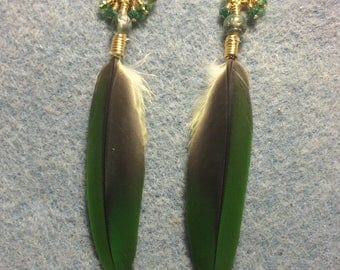 Dark green Amazon parrot feather earrings adorned with tiny dangling green Chinese crystal beads